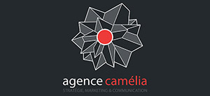 agence webmarketing bordeaux camelia