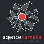 Entrevue avec Sébastien Tricard fondateur de l'agence CAMELIA