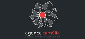 agence webmarketing camelia