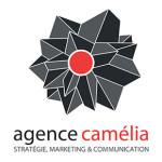 Entrevue avec l'agence webmarketing CAMELIA Partie 2